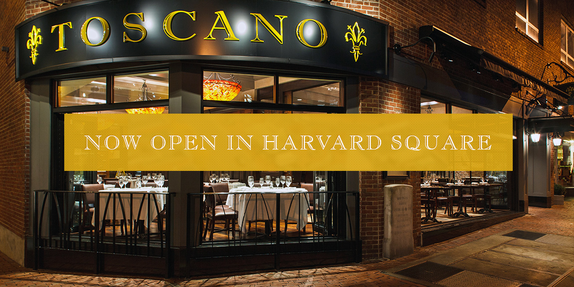 Now Open in Harvard Square